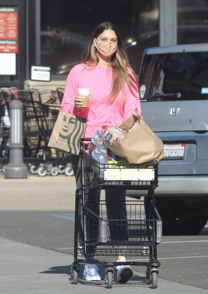 April Love Geary in a Pink Sweatshirt Goes Shopping at Pavilions in Malibu – Celeb Donut