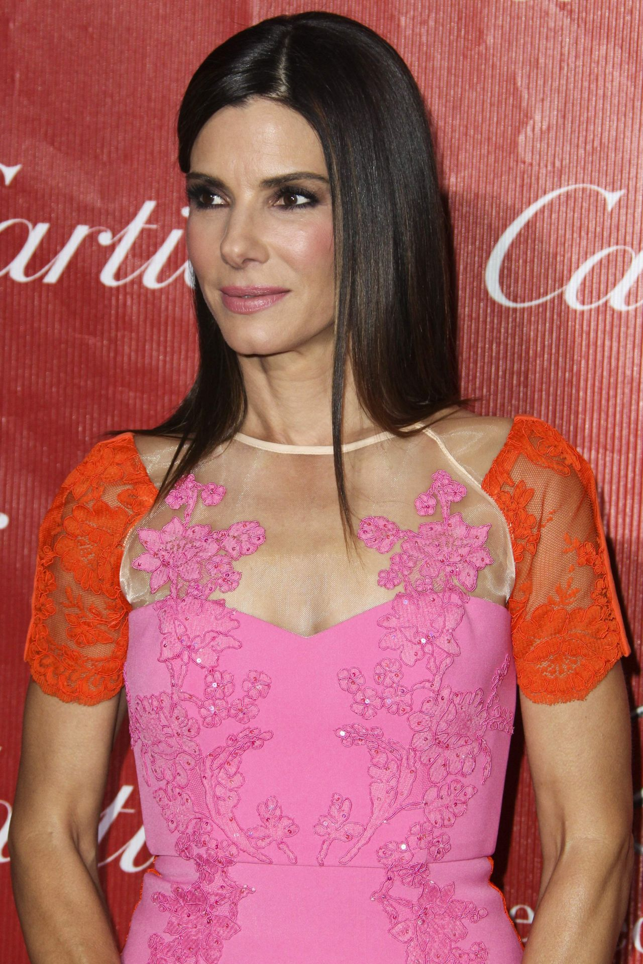 Sandra Bullock Red Carpet Photos From Palm Springs Film