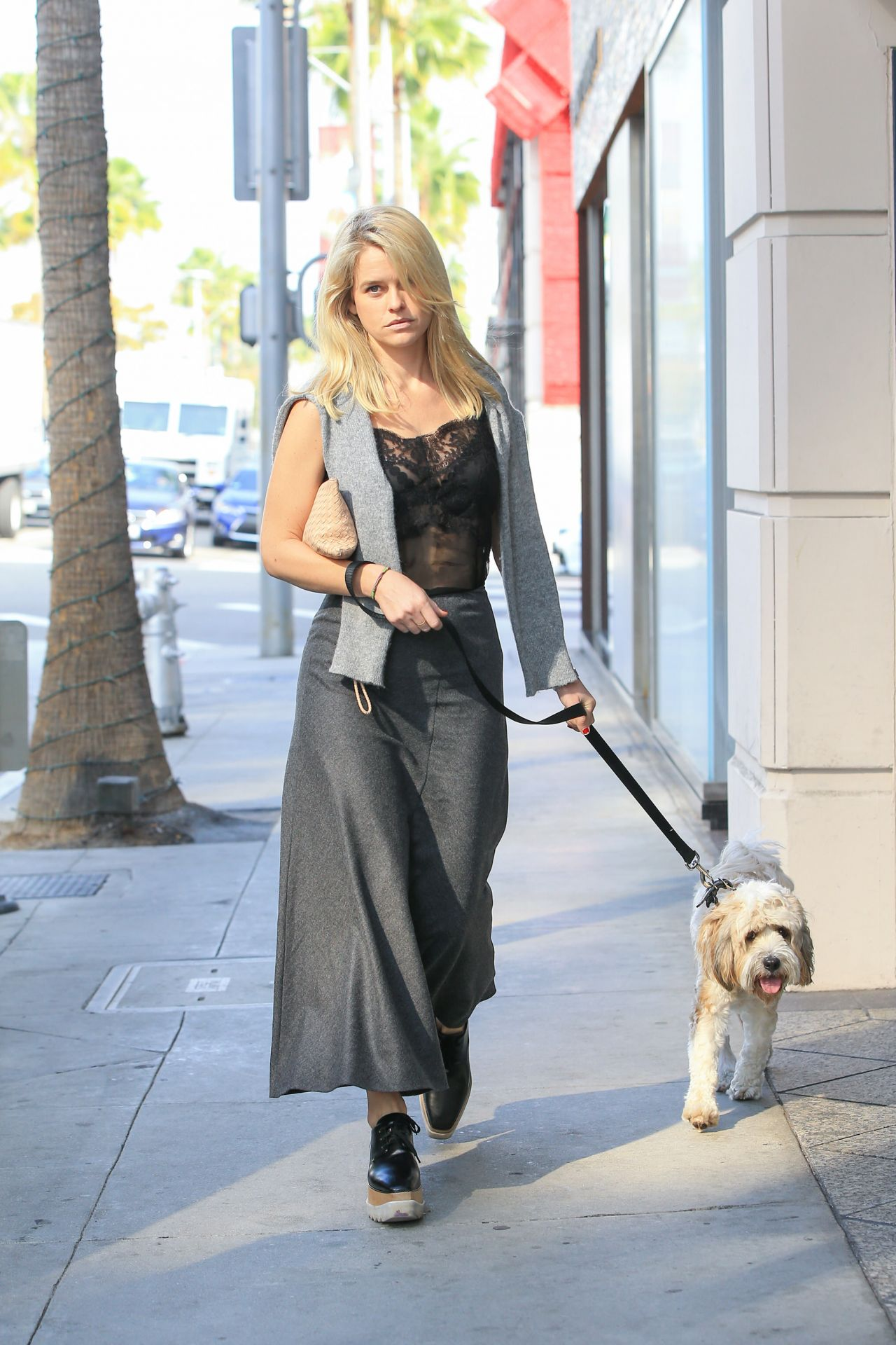 Alice Eve  Walking her Dog in Los Angeles 1116 2016