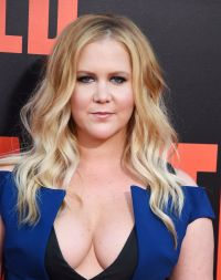 "Amy Schumer on Red Carpet - ""Snatched"" Premiere in Los ..."