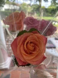 Surprise Roses for their Mums