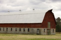 Big Red Barn (12)