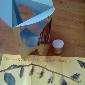 Beginner Butterfly Kit