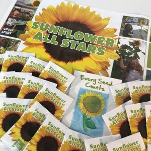 Sunflower All Stars Kit