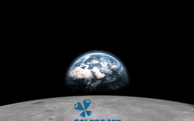 Celebrate Planet Earth!