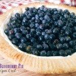 best fresh blueberry pie recipe