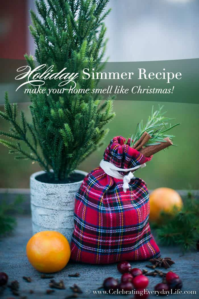 Want to make your house smell like Christmas? Try this delicious homemade Holiday Simmer Recipe to unleash the delicious scents of the season! This makes a great homemade gift too!
