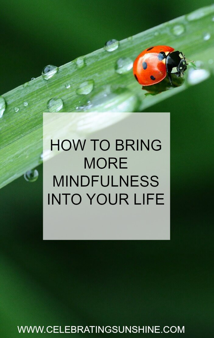 Mindfulness can help you cultivate a sense of well-being and can bring calm, awareness, and creativity into everyday life.