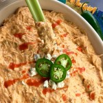 Slow Cooker Spicy Buffalo Chicken Dip Recipe