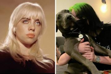 Billie Eilish tiene colaboración de su perro Shark en su disco.