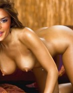 Alessandra Ambrosio Boobs Fake 001