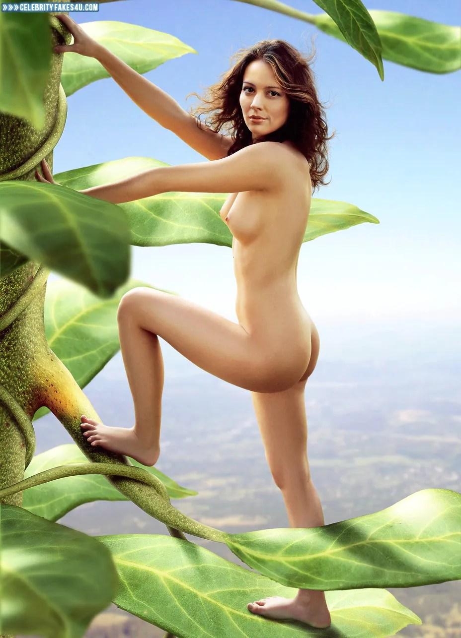 Amy Acker Nude Photos Cool amy acker naked ass fake-004 « celebrityfakes4u