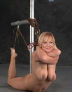 Amy Poehler Large Tits Bondage Fake 001