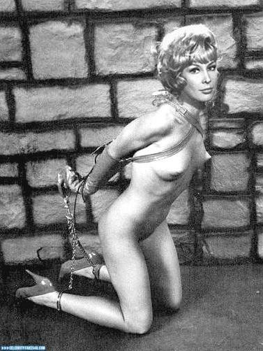Barbara Eden Fake, BDSM, Bondage, Nude, Tits, Porn