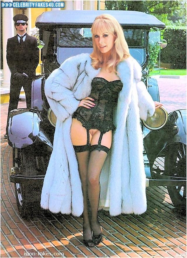 Barbara Eden Fake, Blonde, Heels, Lingerie, Nude, Pantiless, Public, Stockings, Porn
