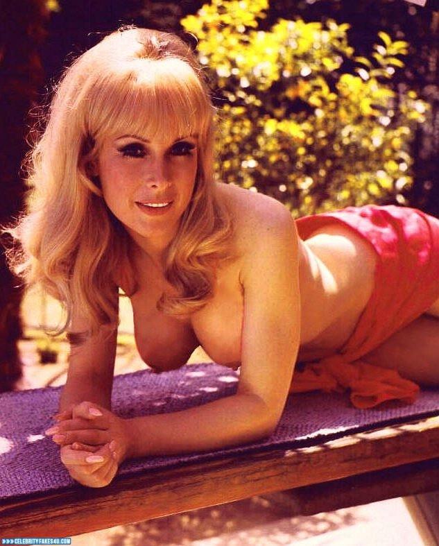 Barbara Eden Fake, I Dream of Jeannie (TV Series), Nude, Outdoor, Series, Tits, Porn