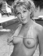 Barbara Eden Titty Flash Nipples Naked 001