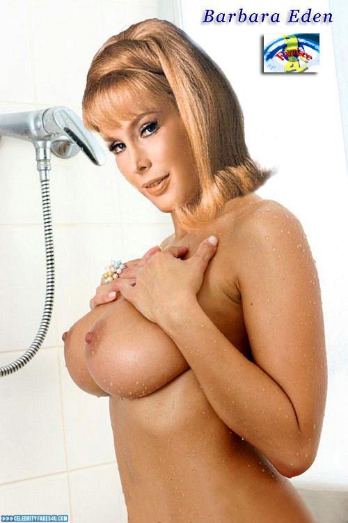 Barbara Eden Fake, Horny, Tits, Very Nice Tits, Wet, Porn