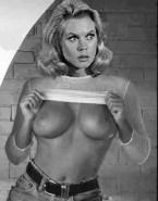 Elizabeth Montgomery Porn Tit Flash 001