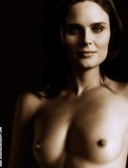 Emily Deschanel Tits Fake