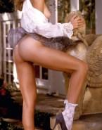 Erica Durance Ass Legs Nudes 001