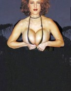 Gillian Anderson Huge Tits Boobs Squeezed 001