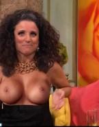 Julia Louis Dreyfus Titty Flash Fake 001