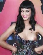 Katy Perry Nip Slip Public Porn Fake 001