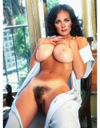Lynda Carter Hairy Pussy Squeezing Tits Naked 001