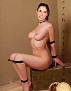 Sarah Silverman Rope Play Bdsm Nice Tits Nudes 001