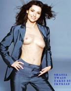Shania Twain Tits Exposed Fake 001