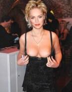 Sharon Stone Big Breasts Public Fakes 001