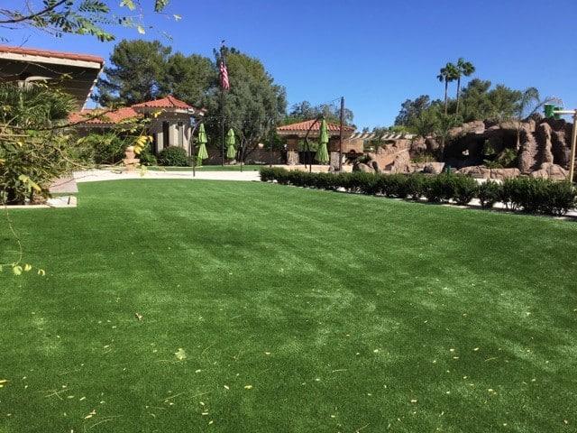pet friendly backyard artificial grass