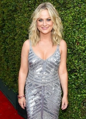 Amy Poehler Biography