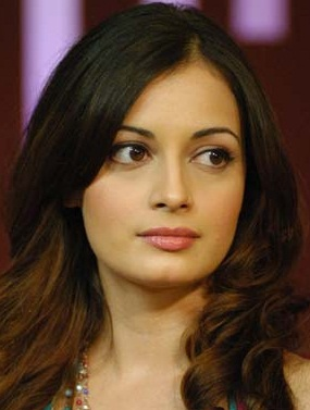 dia mirza marriage