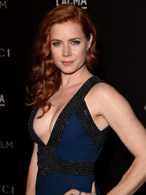 Amy Adams Body Measurements