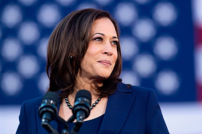 Kamala Harris Goes Viral With This Video Where She Endorses Joe Biden