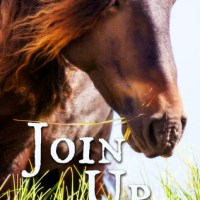 Join Up by Tudor Robins
