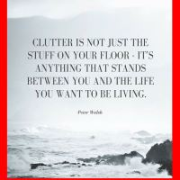 Clutter: Between You and The Life You Want