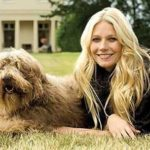 Gwyneth Paltrow pet
