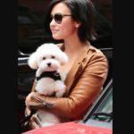 Demi Lovato pet