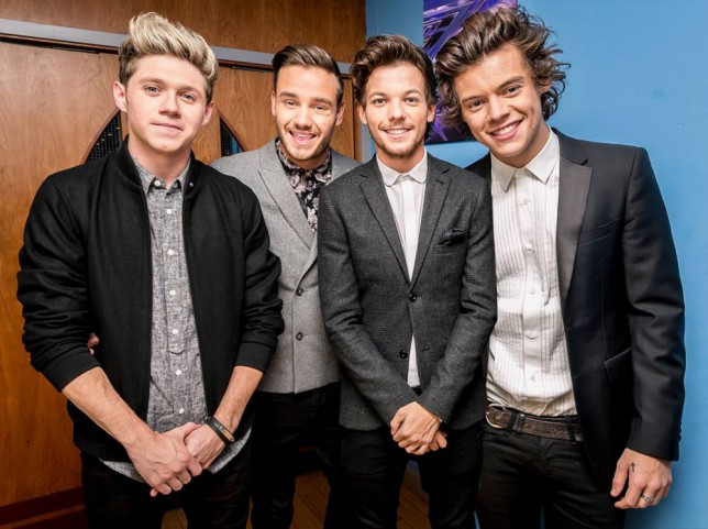 Left to Right: Niall Horan, Liam Payne, Louis Tomlinson, Harry Styles