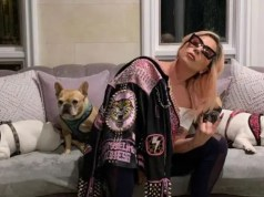 Lady-Gaga-and-her-dogs
