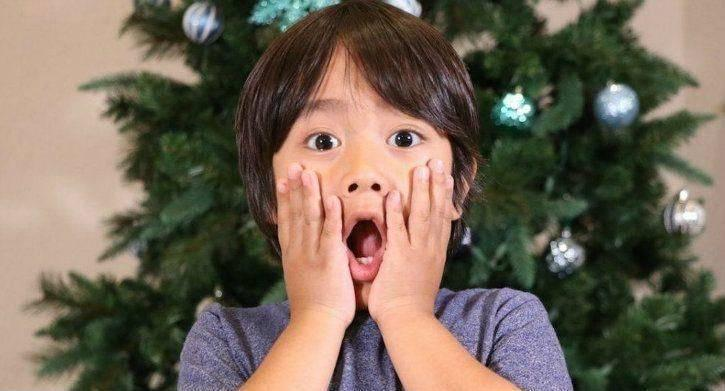 Ryan ToysReview Height, Bio, Wiki, Age, Family, Net Worth, Facts