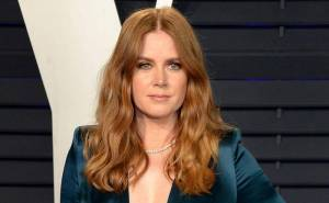 Amy Adams Lifestyle, Wiki, Net Worth, Income, Salary, House, Cars, Favorites, Affairs, Awards, Family, Facts & Biography