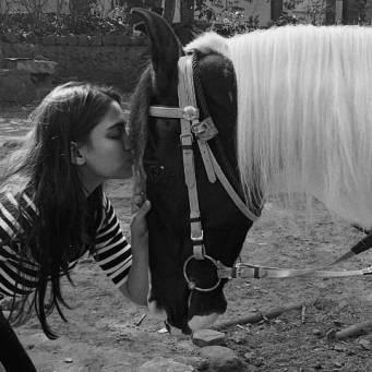 Saiee Manjrekar with a horse