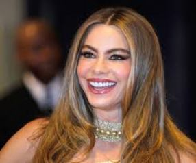 Sofía Margarita Vergara is A Colombian Actress and Model Bra size Favorite Things Relationships Career Profile Net Worth