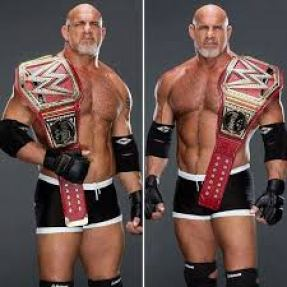 William Scott Bill Goldberg Net Worth Shoe Size Weight Height Relationship Career Profile Favorite Affairs Wiki Things An American Professional Wrestler Actor Football Player Mixed Martial Arts Commentator WWE and WCW