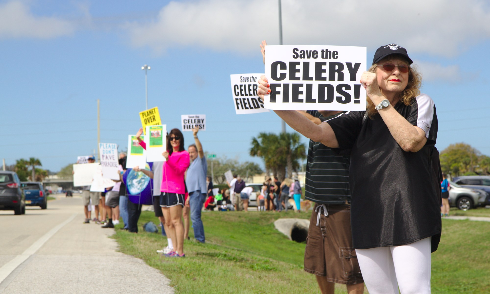 Save the Celery Fields: Protesters on Palmer 2/25/2017