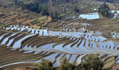 Stepped Field in Guizhou